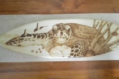 Turtle surfboard